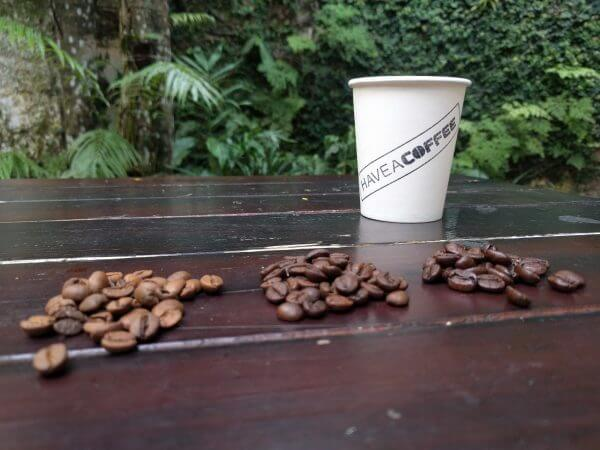 Have A Coffee House Blend #1 Specialty kaffe